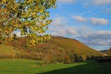 Autumn2opt