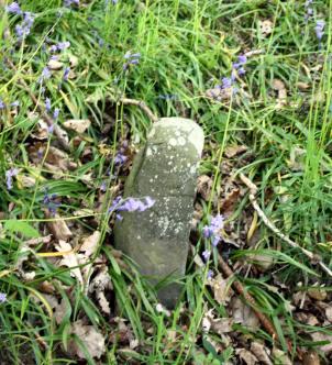 The last of the original mere stones