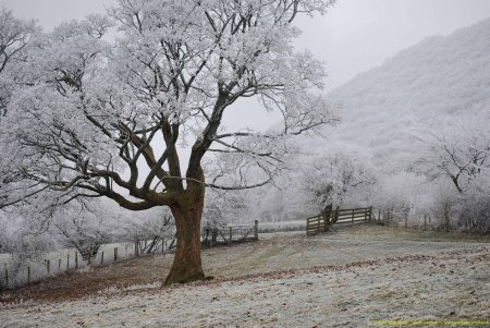 Winter4OPT