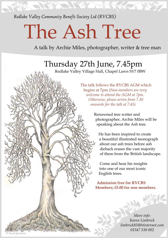 ash tree june 19